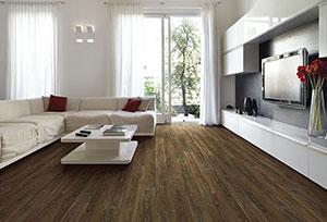 coretec-smoked-rustic-pine